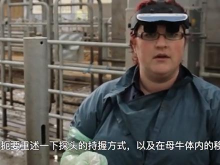 title='牛生殖系统超声波检查在线培训课程 - 6. 怀孕母牛的超声波检查(妊娠37天)'